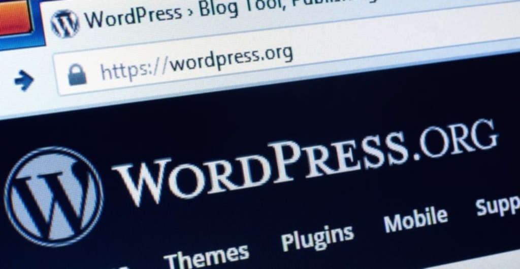 wordpress-computer-screen-monitor-home-page