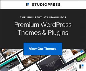 53-StudioPressThemes-300x250-5289